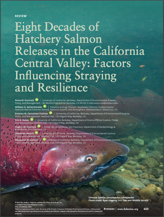 Sturrock et al. 2019: Eight decades of hatchery salmon releases in the California Central Valley: factors influencing straying and resilience